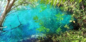 Cool Off in a Cenote